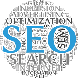 Search Engine Optimization Fit In